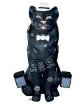 03-2020-wendy-chana-cotter-dj-cat-2