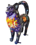 18-2020-catskill-elementary-school-space-cat-3